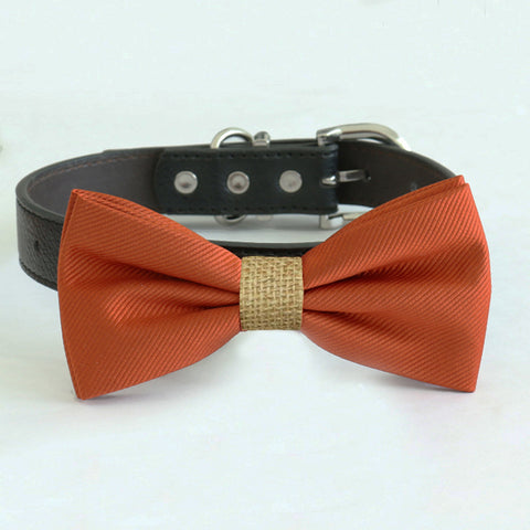 Cinnamon bow tie collar, handmade Puppy bow tie, XS to XXL collar and bow adjustable dog of honor ring bearer, Cinnamon burlap bow tie , Wedding dog collar