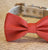 Coral Dog Bow Tie, Coral Wedding Dog Collar, Coral Pet wedding accessory, Wedding ideas - LA Dog Store  - 2