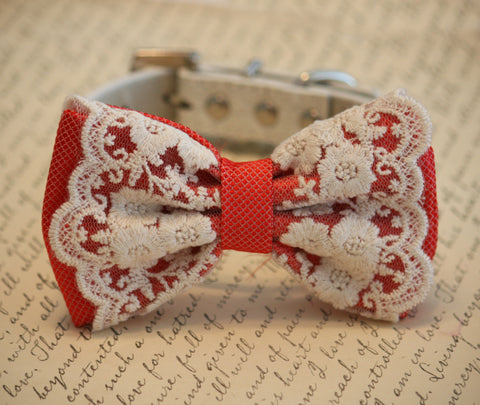 Coral wedding dog collar, Coral Dog Bow Tie, beach wedding , Wedding dog collar