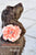 Coral Wedding Dog Collars- Coral Floral Dog Collar, Pet wedding accessory, Dog Lovers - LA Dog Store  - 1