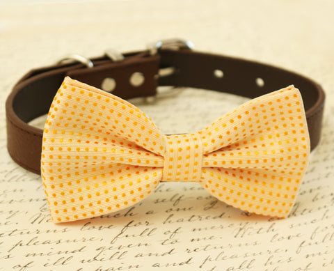 Cream dog Bow Tie attached to collar, pet wedding, Cream wedding