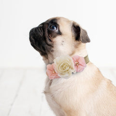 Handmade Peach Ivory Flower dog collar, flower leather collar, Dog of honor proposal XS to XXL collar, Puppy Girl flower collar