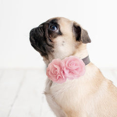 Pink Flower dog collar, Handmade flower leather collar, Dog of honor proposal XS to XXL collar, Puppy Girl flower collar