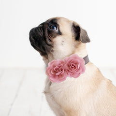 Dusty rose  Flower dog collar, Handmade flower leather collar, Dog of honor proposal XS to XXL collar, Puppy Girl flower collar
