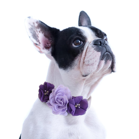 Handmade Lilac purple Flower dog collar, flower leather collar, Dog of honor proposal XS to XXL collar, Puppy Girl flower collar , Wedding dog collar
