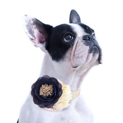 Navy Flower dog collar, Pearl beaded handmade flower collar, Dog of honor, proposal or every day use, S to XXL collar , Wedding dog collar