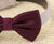 Eggplant dog bow tie collar - Dog collar
