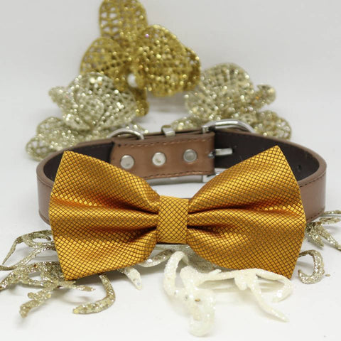 Gold Dog Bow Tie collar, dogs Gift, Pet Wedding, Puppy Love, Handmade