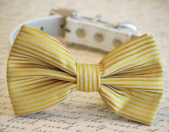 Gold Dog Bow Tie, Pet Wedding accessory, Gold wedding idea, Dog Bow tie, Gold Pet accessory - LA Dog Store  - 1