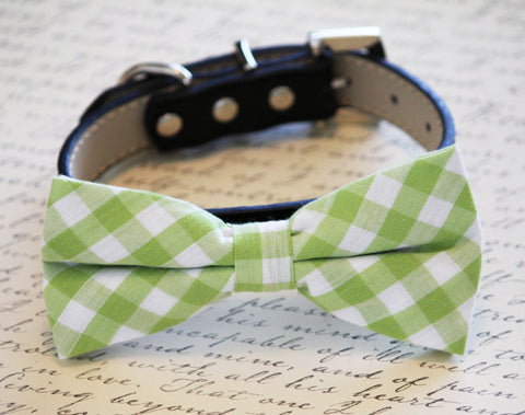 Plaid Green Dog Bow tie with Collar, Spring wedding dog accessory, plaid wedding , Wedding dog collar