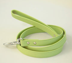 Pet Leash, Green, Pet accessory, Green Leather leash, Color of year