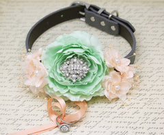 Mint Peach Ring bearer Beach wedding Dog Collar, Proposal, Rhinestone and pearls , Wedding dog collar