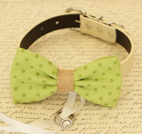 Green Dog Bow Tie ring bearer attached to collar, Burlap wedding pet ideas