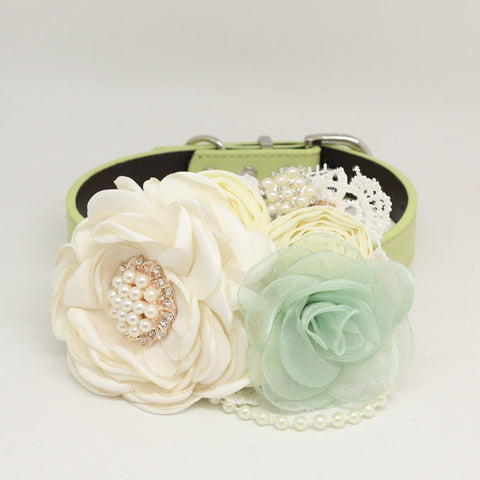 Patience Ivory Green Flower dog collar, Pet wedding accessory, Pearls Rhinestone