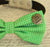 Green Dog Bow tie, Bow attached to dog collar,Live your dream, Dog birthday gift, Pet wedding accessory, Green wedding, Yellow, Polka dots - LA Dog Store  - 2
