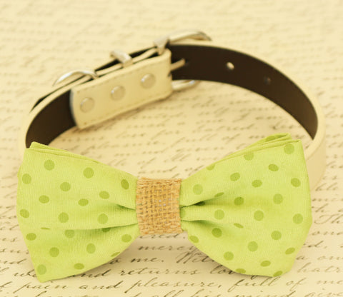 Green dog Bow tie attached to collar, Pet wedding accessory, Burlap