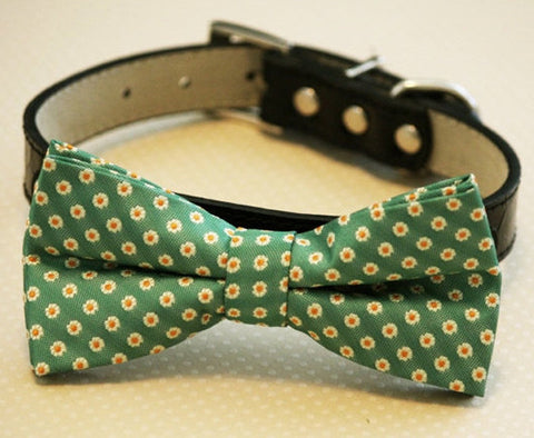 Green Bow Tie attached to leather collar, Chic Wedding, dog lovers