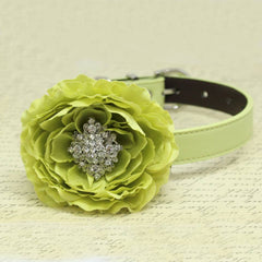 Greenery Floral Wedding Dog Collar, Pets Wedding, Peony with Rhinestone, Handmade Gifts