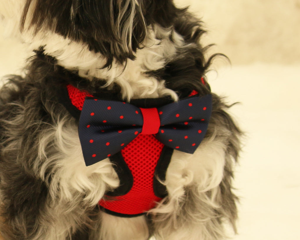Harness Red_Navy2_1024x1024?v=1465696136 red dog harness bow tie leash la dog store