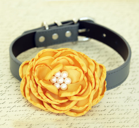 Honey Yellow Flower dog collar, Wedding dog collar , Wedding dog collar