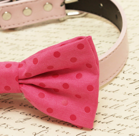Hot pink dog Bow tie attached to collar, Pet wedding Polka dots bow tie , Wedding dog collar