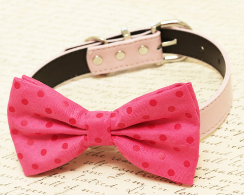 Hot pink dog Bow tie attached to collar, Pet wedding Polka dots bow tie