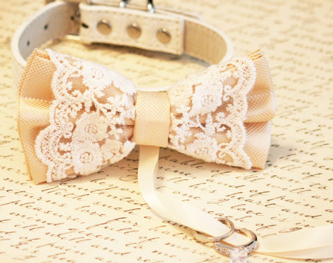 Ivory Bow Tie Dog ring bearer Wedding, Pet lovers, Boho Wedding ideas