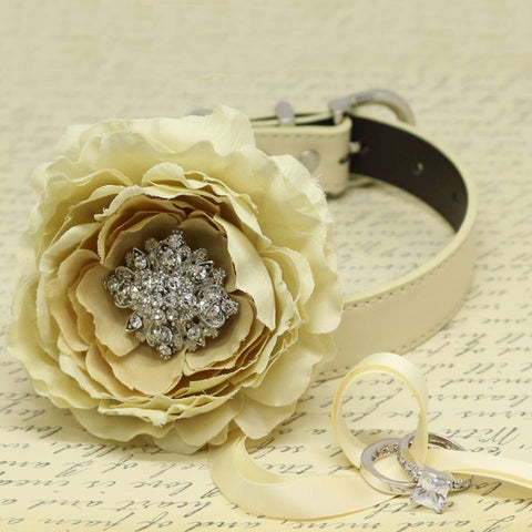 Champagne Ivory Flower Ring Bearer Dog Collar, Pet Wedding, Puppy Proposal, Beaded dogs collar