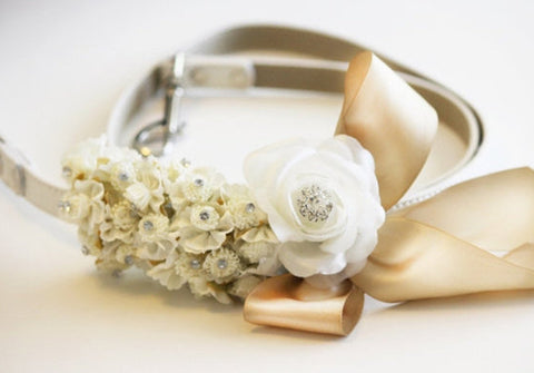 Ivory Champagne wedding, dog Leash, Wedding accessory, Ivory wedding accessory, Dog Leash