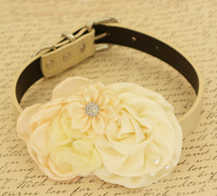 Ivory Floral dog collar Pet wedding, Dog birthday, Ivory Flowers wedding