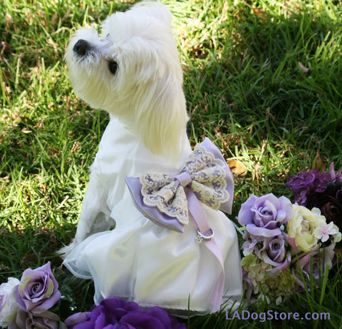 Lilac Wedding Dog dress ring bearer, pet Wedding, Proposal idea , Wedding dog collar