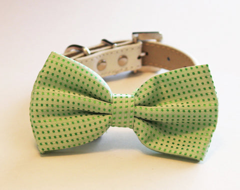 Green Dog Bow Tie attached to collar, Pet Wedding Accessory, Spring Wedding