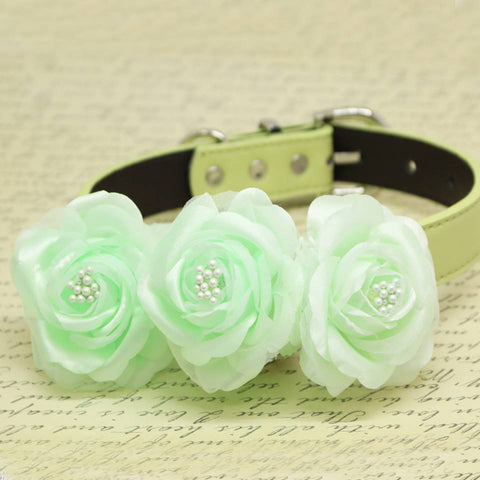 Mint Green Floral Dog Collar, Wedding Pet Accessory, Rose Flowers with Pearls , Wedding dog collar
