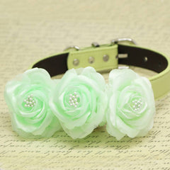 Mint Green Floral Dog Collar, Wedding Pet Accessory, Rose Flowers with Pearls