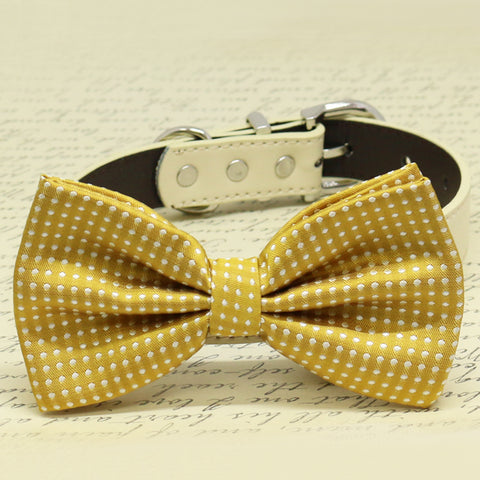 Mustard Dog Bow tie with pet collar, Chic and Elegent, Wedding Dog Accessory