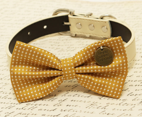 Mustard dog Bow attached to collar, Pet accessory, Charm, Never Never Give up , Wedding dog collar