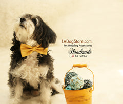 Mustard Dog Bow Tie Bow tie attached to Brown collar, Dog Lovers, Unique Gift - LA Dog Store  - 1