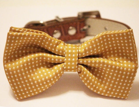 Mustard Dog Bow Tie Bow tie attached to Brown collar, Dog Lovers, Unique Gift , Wedding dog collar