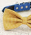 Mustard bow tie, bow attached to blue color, fall color, color 2015, Pantone 15-0743, 2015 Fashion, Dog birthday gift, dog accessory - LA Dog Store  - 2