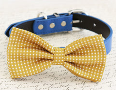 Mustard bow tie, bow attached to blue color, fall color, color 2015, Pantone 15-0743, 2015 Fashion, Dog birthday gift, dog accessory - LA Dog Store  - 1
