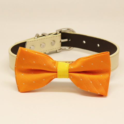 Yellow Orange Dog Bow Tie collar, Pet accessory