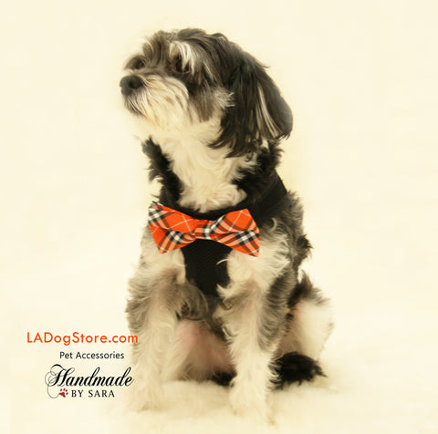 Dog Harness, Bow attached to dog harness, Orange Bow tie , Wedding dog collar