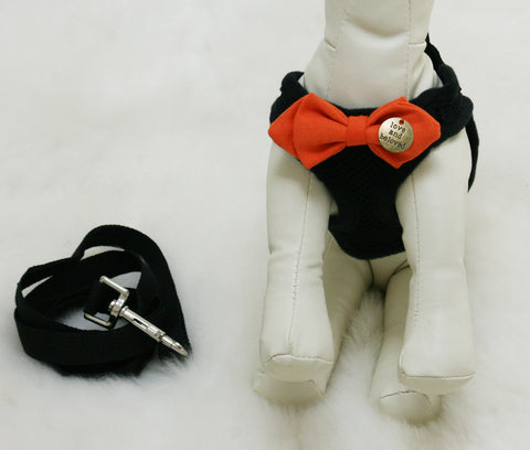 Black Dog Harness with orange bow and a black leash