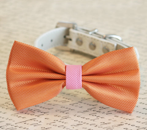 Orange and Pink Dog Bow Tie, Pet Wedding accessory, Summer Wedding