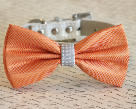 Orange and Gray Dog Bow Tie, Pet Wedding accessory, Orange wedding idea