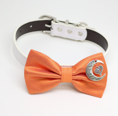 Orange Dog Bow tie collar, Heart,I love you to the moon and back, Proposal