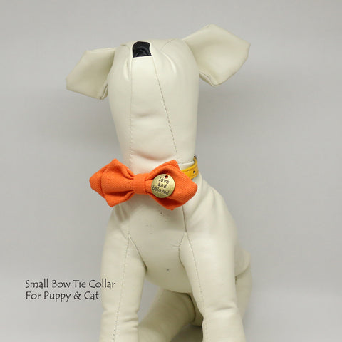 Copy of Carrot bow, love and beloved, Small bow tie collar, Puppy Collar, Cat collar, Cat bow tie collar