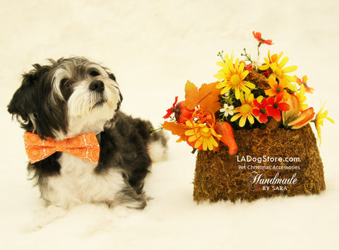 Orange dog Bow tie collar, Floral dog bow tie, Pet fall Accessory, Dog birthday gift , Wedding dog collar