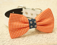 Orange Dog Bow Tie, Bow attached to brown dog collar, Pet wedding accessory, Fall wedding, dog accessory, Orange Navy bow tie, Polka dots - LA Dog Store  - 1