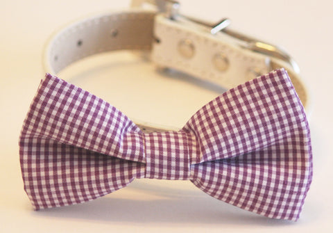 Purple Dog Bow Tie with collar, Cute Dog Bow tie, Purple Wedding accessory